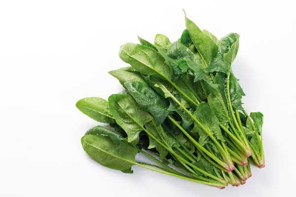 葉酸のイメージ写真
